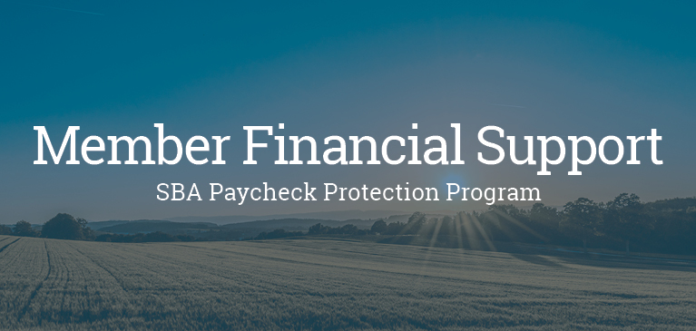 SBA Paycheck Protection Program Field Blue