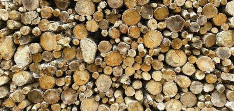 Pile of round small logs in a wood pile ready to be burned in a wood-burning fireplace in winter.