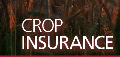 Crop Insurance Booklet Cover