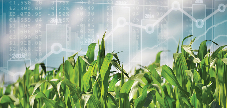 Financial Metrics for Farm Business